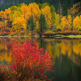 Dan Mihai - Wenatchee River Reflections
