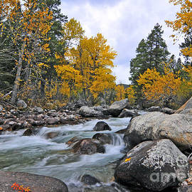 Gary Beeler - West Fork of Rock Creek Fall Colors