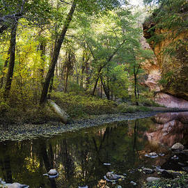 Saija  Lehtonen - West Fork Reflections