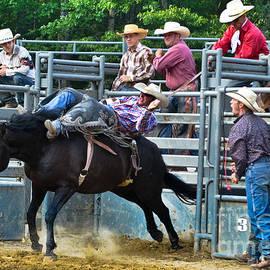 Gary Keesler - Western Cowboy