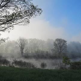 MTBobbins Photography - Wetland Mist