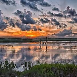 Louise Hill - Wetland Orange Sky