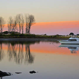 Venetia Featherstone-Witty - Whakatane at Sunset