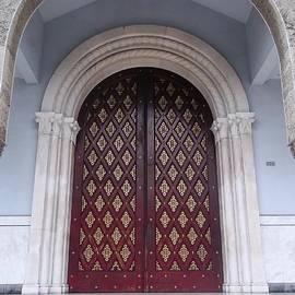 Vladimir Berrio Lemm - What A Door Means