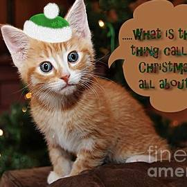 Vickie Emms - What Is This Thing Called Christmas All About Card