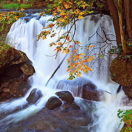 Eti Reid - Whatcom falls early autumn.