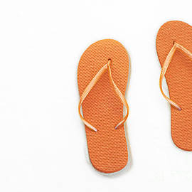 Andee Design - Where On Earth Is Spring - My Orange Flip Flops Are Waiting