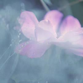 Jenny Rainbow - Whispering Wild Rose