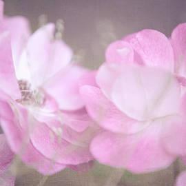 Jenny Rainbow - Whispering Wild Roses