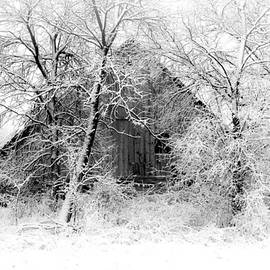 Julie Hamilton - White Christmas 1