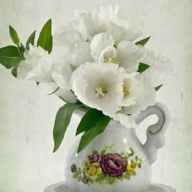Sandra Foster - White Godetia Flowers