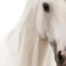 Gosia K - White Horse