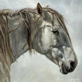 True Image - White Horse