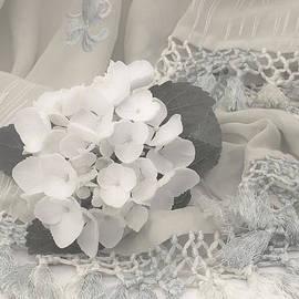 Sandra Foster - White Hydrangea Flower And Fringed Sari