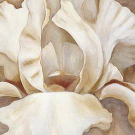 Michal Shimoni - White Iris