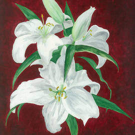 Jekaterina Mudivarthi - White lily dark red background