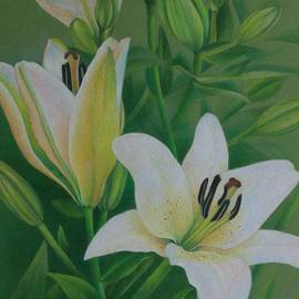 Pamela Clements - White Lily