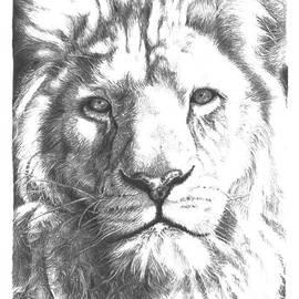 Yana Wolanski - White Lion