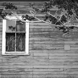 Cathie Richardson - White Lone Window