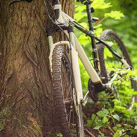 Aleksey Tugolukov - white mountain bike