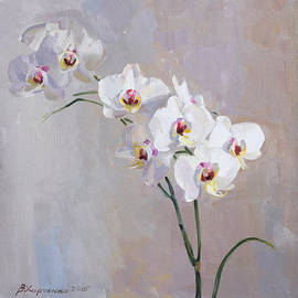 Victoria Kharchenko - White orchid