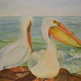 Hannah Boynton - White Pelicans