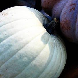 Tina M Wenger - White Pumpkin