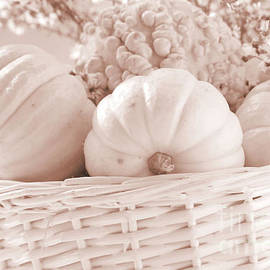 Luv Photography - White Pumpkins in Sepia