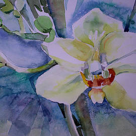 Mindy Newman - White Shades of Orchid