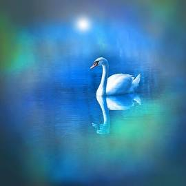 Lilia D - White Swan in blue fog