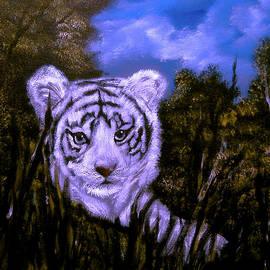 Cynthia Adams - White Tiger Cub Sold