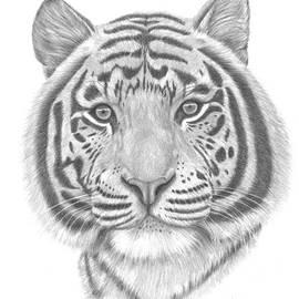 Patricia Hiltz - White Tiger