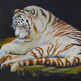 Phyllis Beiser - White Tiger Sleeping