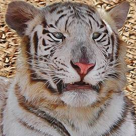 Diane Alexander - White Tiger Smile