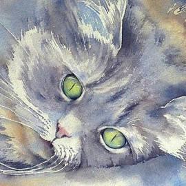 Thomas Habermann - White whiskers 2