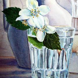 Irina Sztukowski - White White Jasmine