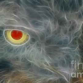 Gary Gingrich Galleries - Whooooos Watching-6297-Fractal