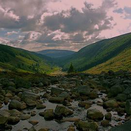 Lisa Fortin Jackson - Wicklow Mountains
