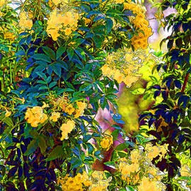 Linda Phelps - Wild and Crazy Floral