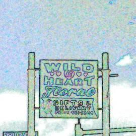 Kelly Awad - Wild at Heart