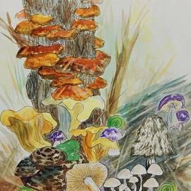 Ellen Levinson - Wild Edible Mushrooms