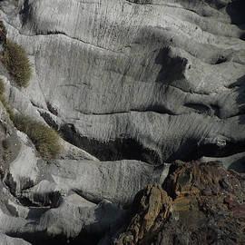 Colette V Hera  Guggenheim  - Wild Santorini Nature
