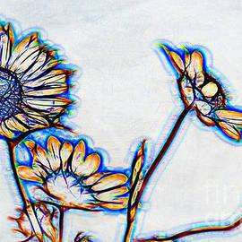 Anna Surface - Wild Sunflowers on White