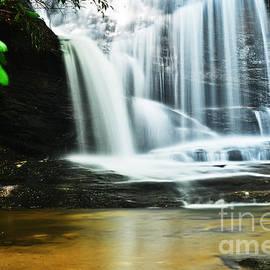 Elvis Vaughn - Wildcat Branch Waterfall