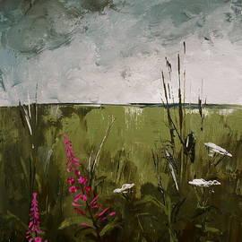 Carolyn Doe - Wildflower Storm