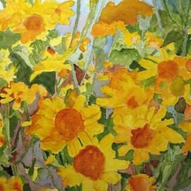 Sandy McIntire - Wildflower Volunteers