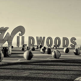 Bill Cannon - Wildwoods in Sepia
