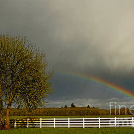 Nick  Boren - Willamette Valley Rainbow Landscape