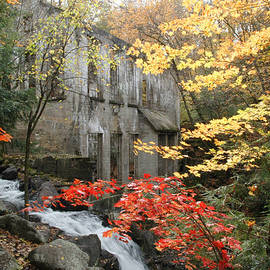 Rob Huntley - Willsons Ruins in Gatineau Park in Quebec