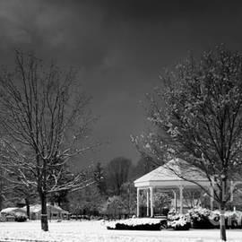 Leonard Malvone - Wilmington  Common In Winter  Black and  White